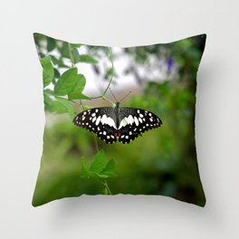 Butterfly Small Throw Pillow