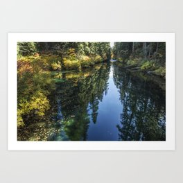 A Watery Avenue of Trees Art Print