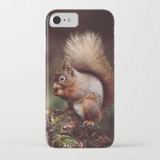 RED SQUIRREL. iPhone 7 Slim Case