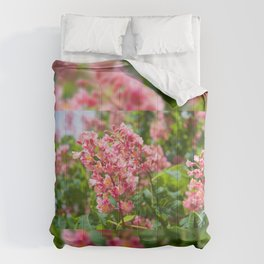 Aesculus red blossom cluster Comforters