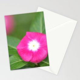 Pink Flower Close Up W/ Strong Depth Stationery Cards