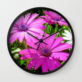 Purple And Pink Tropical Daisy Flower Wall Clock