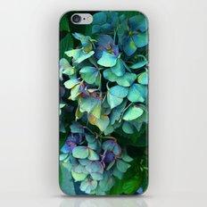 Treasure of Nature VII iPhone & iPod Skin