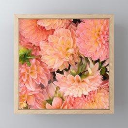 Pink Dahlias Framed Mini Art Print