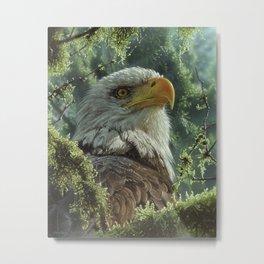 Bald Eagle - High and Mighty Metal Print