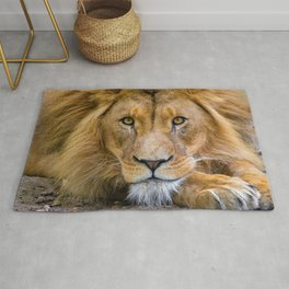 Eyes of the King of the Jungle color photograph / photography Rug