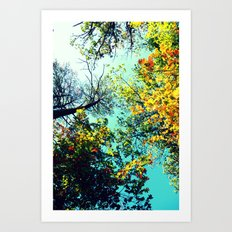 Looking Up Art Print