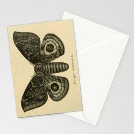 Io Moth Stationery Cards