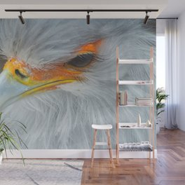 Feathers and eyelashes Wall Mural