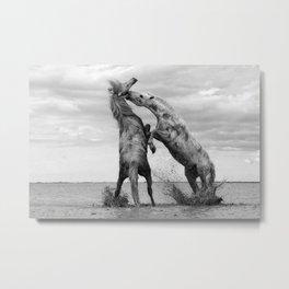 Wild Horses - Ocracoke Island, Hatteras, North Carolina black and white photograph / art photography Metal Print