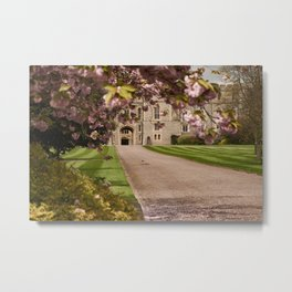 Flower Photography by JJ Jordan Metal Print