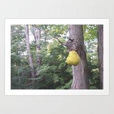 Pear in the air Art Print