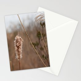 Cape May Nature Walk Stationery Cards