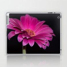 Pink Gerbera Laptop & iPad Skin