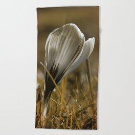 Spring beauty Beach Towel