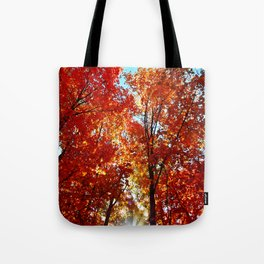 Sun Rays in the Leaves Tote Bag