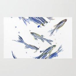 Fish art Danio zebra fish, gray-blue aquatic beach home decor Rug