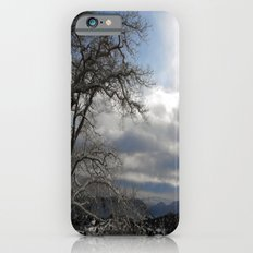 Winter in Spring iPhone 6s Slim Case