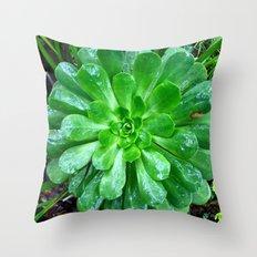 Giant succulent flower Throw Pillow