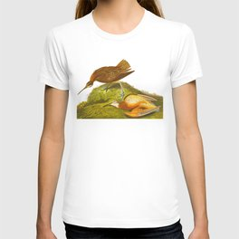 Esquimaux Curlew John James Audubon Scientific Illustration Birds Of America Drawings T-shirt