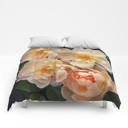 English Rose Collection Comforters