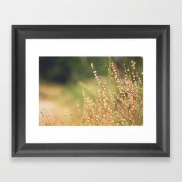 Wild flowers Framed Art Print