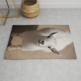 Little Goat Rug