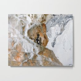 Travertine Mammoth Hot Springs Yellowstone Metal Print