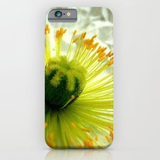 Poppy iPhone 6s Slim Case
