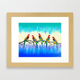Australian Birds Framed Art Print