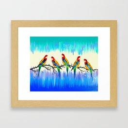Australian Birds Framed Art Print
