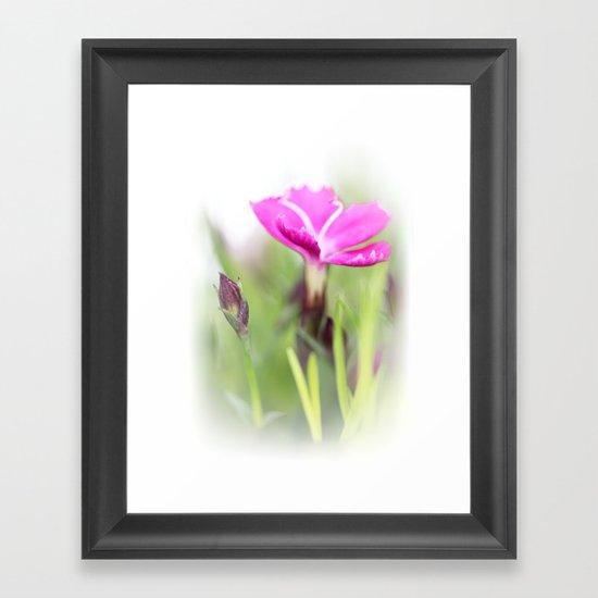 Lilac dream... so sweet... Framed Art Print