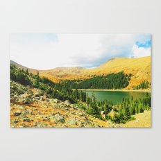 Silver Dollar Canvas Print