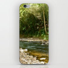 Into the Woods We Go iPhone & iPod Skin