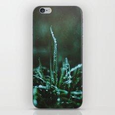 Spring Morning iPhone & iPod Skin