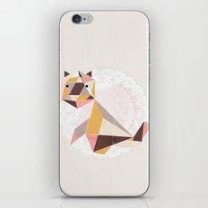 Geometric Cat iPhone & iPod Skin