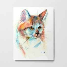 Bicolor cat portrait Metal Print