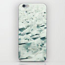Frozen Shore iPhone Skin