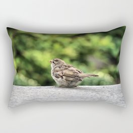 Little Feather Tasting Rectangular Pillow