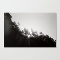 Coast Two Canvas Print