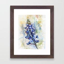 Spring Watercolor Texas Bluebonnet Flowers Framed Art Print