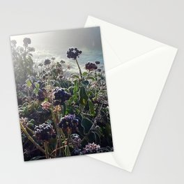 Winter morning (II) Stationery Cards