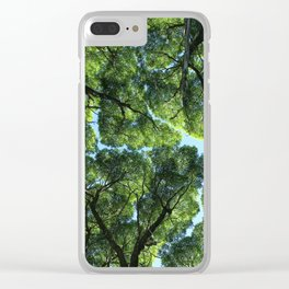 Crack willow Clear iPhone Case