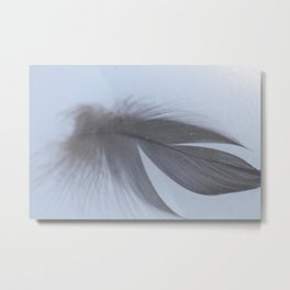 Quill in Snow Metal Print
