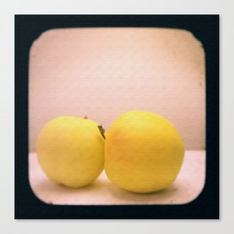 Apples with Texture TTV Canvas Print