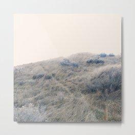 Prairie Path Metal Print