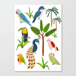 Jungle Birds Species Canvas Print