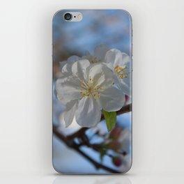 White Crabapple blossoms iPhone Skin
