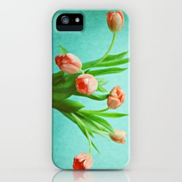 Delightful Display iPhone Case