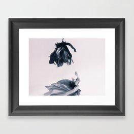 Fading Away II Framed Art Print